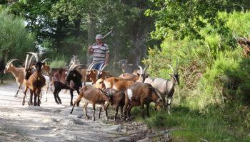 wandelroutes-vanaf-camping-quinta-rural