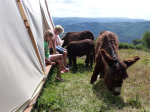 Quinta Rural Cabeceiras de Basto kindvriendelijke eco natuur camping in Noord Portugal met dieren